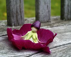 My Mom taught me to make these petal dolls from Holly hocks many many years ago Photo from Old Moss Woman's Secret Garden Hibiscus, Diy For Kids, Crafts For Kids, Daisy Crown, Hollyhocks Flowers, Unique Plants, Fairy Princesses, Rare Flowers, Doll Head