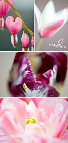 MCK Designs_Spring