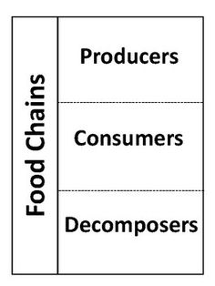 Organisms in a Food Chain Sort Cut & Paste: Producer