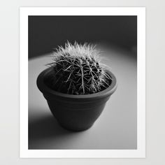 Go check out my Shop on Society Collect your choice of gallery quality Giclée, or fine art prints custom trimmed by hand in a variety of sizes with a white border for framing. Cactus Art, I Shop, Dandelion, Fine Art Prints, Gallery, Check, Roof Rack, Dandelions, Art Prints
