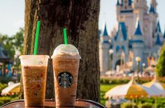 Rankings of all the Magic Kingdom quick service restaurants.