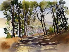 Loja through the pines by Margaret Merry