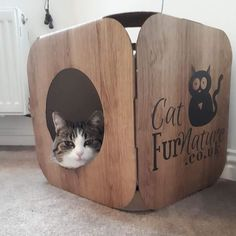 Awwww  Princess is gorgeous  we are so pleased she likes her pod  thank you so much!  #cat #catsofinstagram #cats_of_instagram #catfurnature #catfurniture #catsinboxes #cattoy #INSTACAT_MEOWS #cutecat #PurrMachine #catsinboxes #catbox #Excellent_Cats #BestMeow #dailykittymail #thecatniptimes #catcube #catpod #ArchNemesis #FlyingArchNemesis #myindoorpaws #ififitsisits #cutecatcrew #catchalet #catnip #themeowdaily #kitty #dailykittymail #catgrass