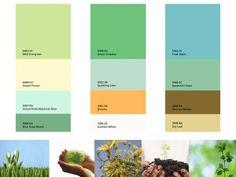 Botanical_releaf_paint_chips_3