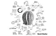 biomimicry design process « Bouncing Ideas