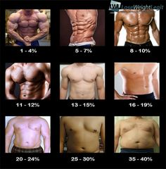 body fat percentage calculator bodybuilding