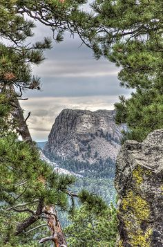 Mount Rushmore National Monument Through the Trees