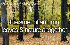 Things I <3 about Fall