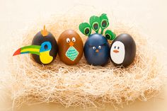 Another Eggstremely Easy Way to Decorate Easter Eggs via Brit + Co.
