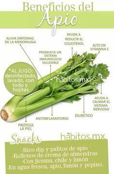 Beneficios del Apio... de hábitos.mx