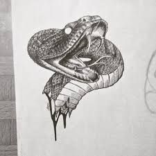 Image result for viper snake head drawing