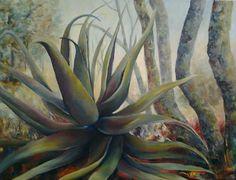 Aloe at dawn