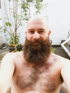 Beard & bald