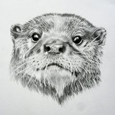 Mrs Otter Art Print