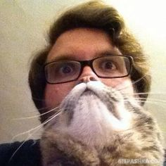 Beautiful World : House cats pictures taken at the right time (25 photos)