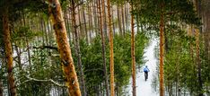 Best Mountain Biking in Denver - The-House Cave Tours, Nature Center, Stunning View, Winter Months, Places Around The World, Rocky Mountains, Best Funny Pictures, Mountain Biking, Tourism
