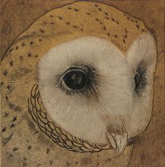 Barn Owl Collagraph - Collograph #printmaking by Hester Cox