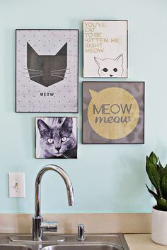 Wall Purrfect Gallery Wall: So fun! Group your favorite animal prints and photos together for a cheerful fur-themed gallery wall.Purrfect Gallery Wall: So fun! Group your favorite animal prints and photos together for a cheerful fur-themed gallery wall. Crazy Cat Lady, Crazy Cats, Cat Bedroom, Photo Chat, Decoration Inspiration, Decor Ideas, Cat Decor, Cat Wall, Animal Decor