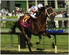 Shop for Hollywood memorabilia, including authentic movie, TV & music collectibles. Find a signed photo, framed celebrity poster or autographed guitar. Horse Racing, Race Horses, Derby Winners, Big Brown, Thoroughbred, Kentucky Derby, Animals And Pets, Nfl, Creatures