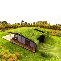 Green roofs are becoming all the rage, and this clever design allows the home to…