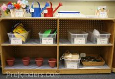 I love the gargen shop idea for the dramatic play areaduring a Plant Theme