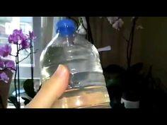 ORKİDE GÜBRESİ, ÇİÇEK COŞTURAN GÜBRE - YouTube Youtube, Water Bottle, Drinks, Farmer, Flowers, Deko, Drinking, Water Flask, Drink