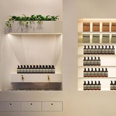 Aesop Capitol Piazza, in Singapore's historic Civic District, s - Google Search