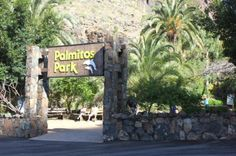 Visiting Palmitos Park zoo and dolphinarium in Gran Canaria - parrots, monkeys and an aquarium tucked in the central mountains
