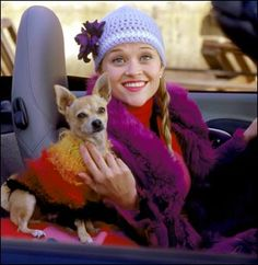 Elle Woods (played by Reese Witherspoon) and big-screen star Bruiser are probably the most famous instance of a dog as an accessory.