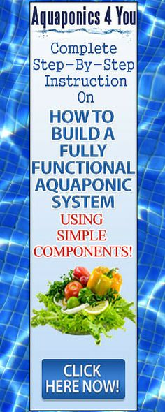 Sustainable living through Aquaponics.  Learn how to create your own Aquaponics System.
