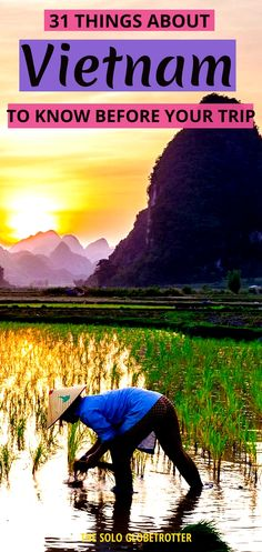 Planning to travel to Vietnam? Here are the 31 things to know before going to Vietnam. Whether it's about the things to know about Vietnamese culture or food or places to visit or the best time… Vietnam Travel Guide, Asia Travel, Japan Travel, Texas Travel, California Travel, Italy Travel, Luang Prabang, Laos, Visit Vietnam