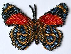 Butterfly Callicore Cynosure, Sova Enterprises   10 colors
