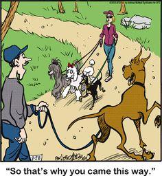 Animal Pics, Funny Animal Pictures, Funny Animals, Dog Comics, Read Comics, Dog Cartoons, Cartoon Fun, Laughter The Best Medicine, Great Dane Dogs