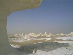 Tours de safari en Egipto, Los oasis de Egipto http://www.espanol.maydoumtravel.com/Paquetes-de-Viajes-Cl%C3%A1sicos-en-Egipto/4/1/29