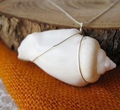 I've always wanted a necklace with a pearly white shell on a simple chain, sort of like this one :)