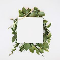 Sheet of paper in leaves Free Photo
