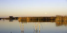 Liminganlahti - Luontoon.fi Finland