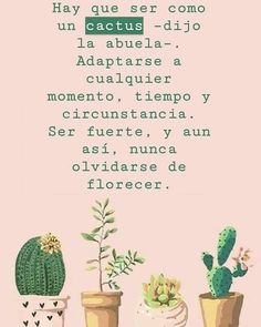 Frases /citas how to draw a rose - Drawing Tips Inspirational Phrases, Motivational Phrases, Cactus Quotes, Best Quotes, Love Quotes, Daily Quotes, Frases Instagram, More Than Words, Spanish Quotes