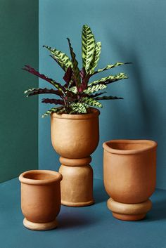 Made from terracotta clay in limited editions. Terracotta Plant Pots, Ceramic Flower Pots, Ceramic Planters, Pottery Studio, Pottery Art, Vases, Milan Furniture, Terracota, Milan Design