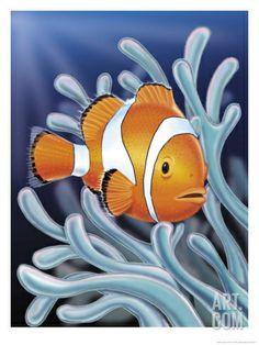 paintings of sea anenomes   Clown Fish Swimming by Sea Anemones Print at Art.com