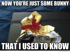 Some bunny I used to know easter easter quotes easter images easter quote happy easter happy easter. easter pictures funny easter quotes happy easter quotes quotes for easter easter memes Some bunny I used to know images funny