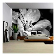 Flower with Raindrops - Removable Wall Mural