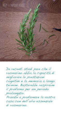 Usi alternativi delle #erbe #aromatiche. Il #rosmarino