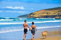 Jan Juc Victoria - Australia  #janjuc #beached#dogwalker #beach#surf#torquay#landscapephotography#beachlovers#love#freedom#run#running#runonthebeach#photographer#nikonowner#photography#composition#perspective#photographer#bluesky#blueskies#walking#bestbeaches#travel#travelaustralia#exploreaustralia#traveler#love#lovers#australiagram#tbt#holidays by capturimaging http://ift.tt/1X8VXis