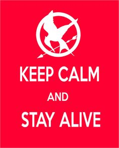 For The Hunger Games fans!