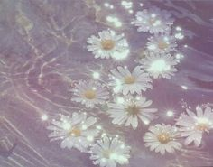 I sit by the river, tears running down my cheeks as I set flowers onto the stream. I hear someone walk up- Victor (anyone?)