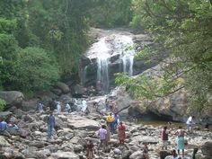 Image of Falls, Munnar, Kerala from the miscellaneous photos of sv. Fall Images, Munnar, Kerala, Birth, Waterfall, India, Spaces, Outdoor, Outdoors