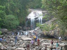 Falls, Munnar, Kerala