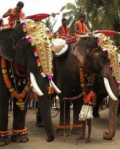 festival in kerala, india