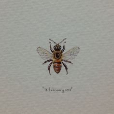Day 49 : Busy busy. 16 x 19 mm. #365paintingsforants #miniature #watercolour #honey #bee